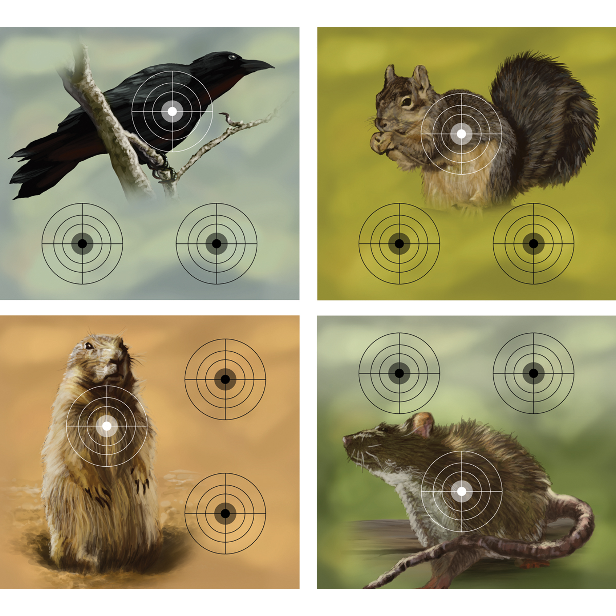 This package of 9.75 x 9 inch paper targets features 5 of 4 distinct designs for a total of 20 targets per package. Each individual paper target features three aiming points.