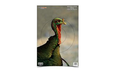 B/C PREGAME TURKEY TGT 8-12X18