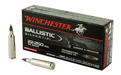 WIN BALLISTIC TIP 22-250 55GR 20/200