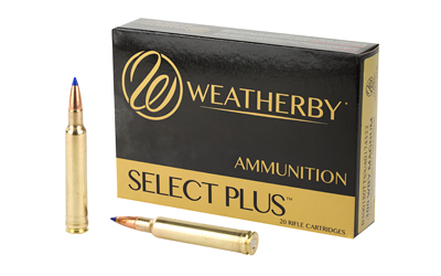 WBY AMMO 300WBY 180GR TSX 20/200